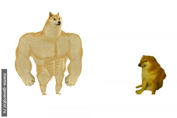 мем buff doge